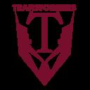 transformers_transp